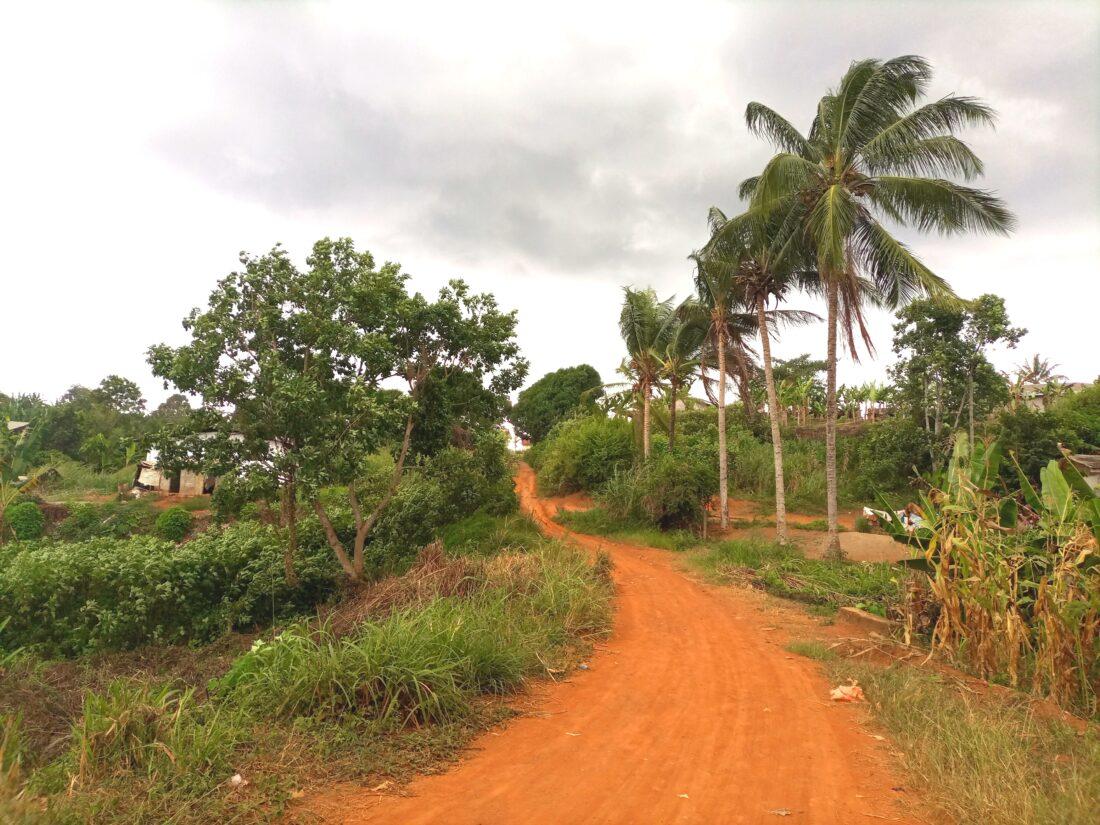 Okola